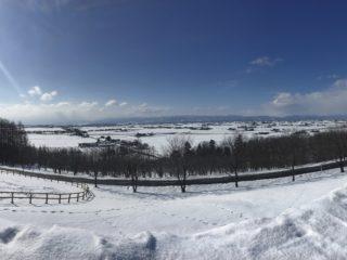 snow pic.